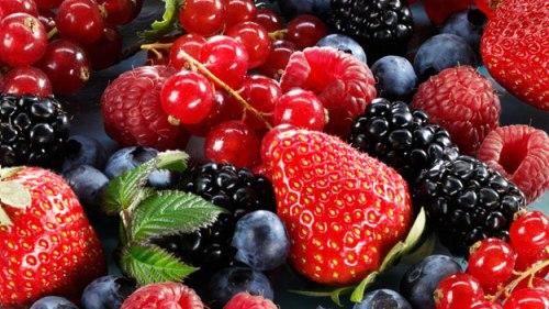 Benefícios dos frutos silvestres para a saúde